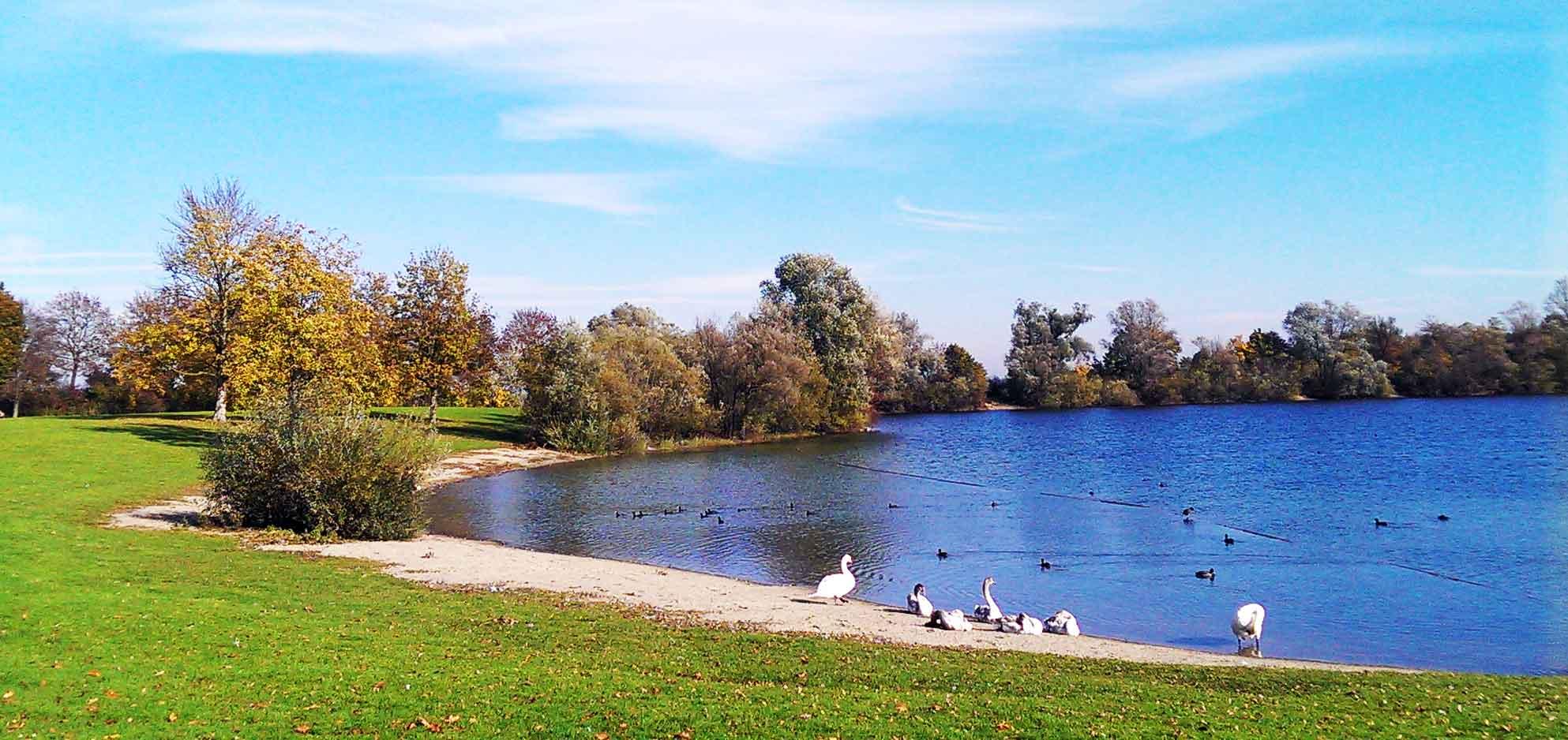 2014-11-02-Neu-Ulm-Badesee