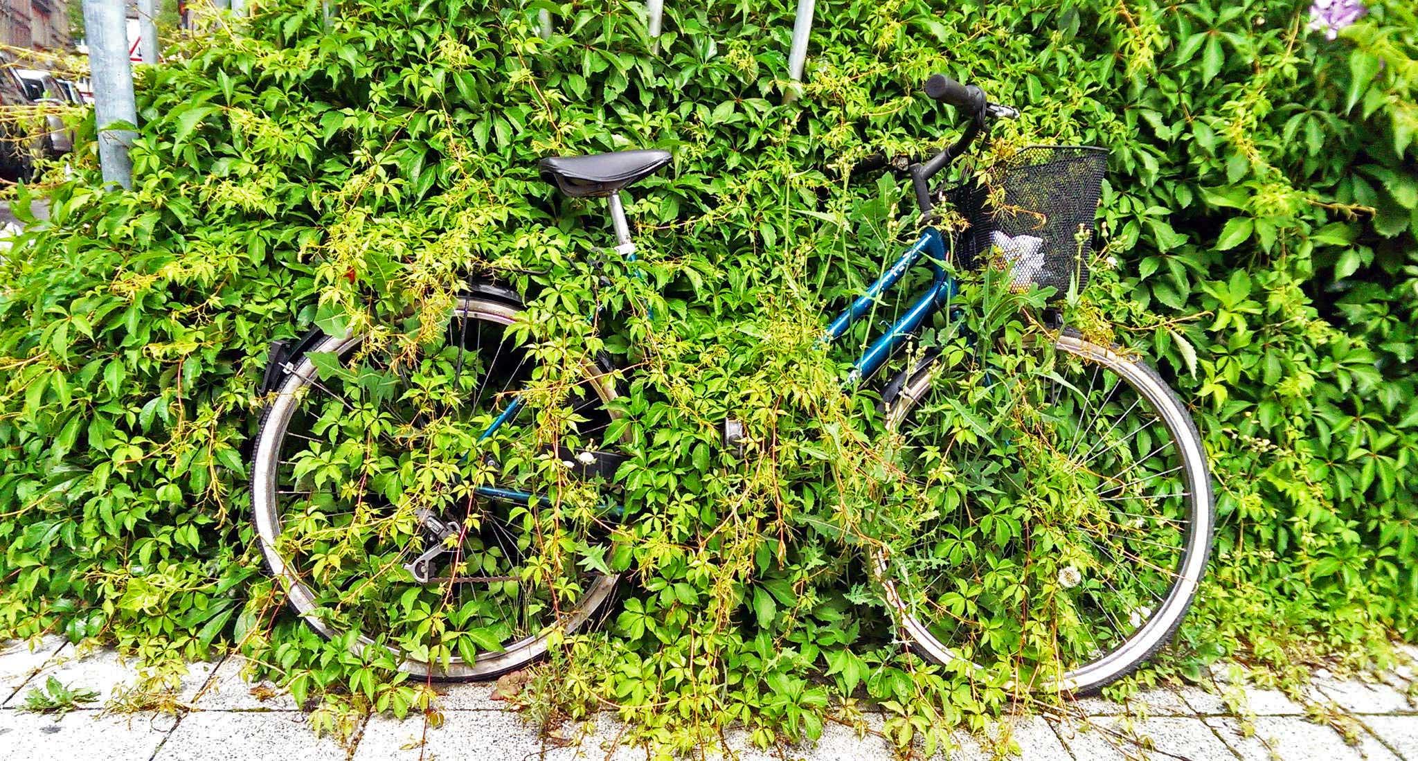 2016-06-12-Finde-das-Fahrrad